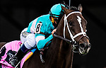 May 15, 2021 : T D Dance, #8, ridden by jockey Javier Castellano, wins the James W. Murphy Stakes on Preakness Stakes Day at Pimlico Race Track in Baltimore, Maryland on May 15, 2021. Alex Evers/Eclipse Sportswire/CSM