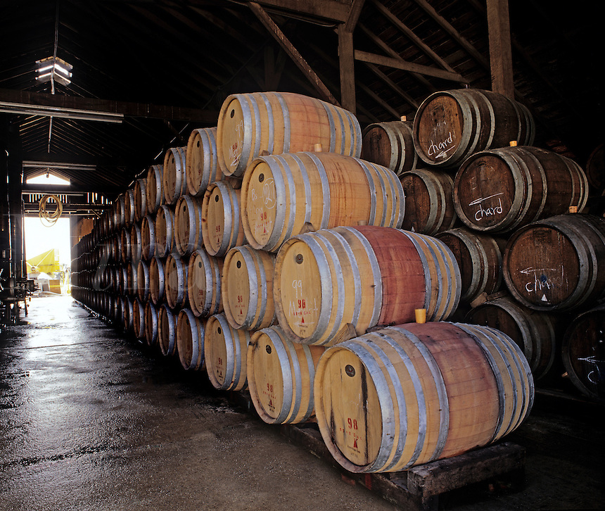 OAK BARREL CASKS for AGING WINE at the VENTANA VINEYARDS - MONTEREY COUNTY, CALIFORNIA