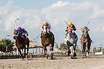 HALLANDALE BEACH, FL - JANUARY 21: #5 Early Entry (orange cap) with jockey Paco Lopez riding gets to the wire first in the Sunshine Millions Sprint at Gulfstream Park. (Photo by Arron Haggart/Eclipse Sportswire/Getty Images