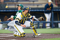 Michigan Wolverines catcher Harrison Wenson (7) waits for the ball at the plate Eastern Michigan Hurons baserunner Drake Lubin (48) scores on May 3, 2016 at Ray Fisher Stadium in Ann Arbor, Michigan. Michigan defeated Eastern Michigan 12-4. (Andrew Woolley/Four Seam Images)