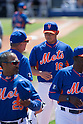 MLB: training game - New York Mets vs Detroit Tigers