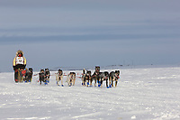 Musher Ramy Brooks heads out of Nome during the 2008 All Alaska Sweepstakes 100 year commemorative sled dog race.