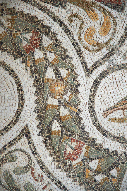Picture of a Roman mosaics design depicting wreaths running around medallions of birds and fishes, from the ancient Roman city of Thysdrus. 3rd century AD. El Djem Archaeological Museum, El Djem, Tunisia.