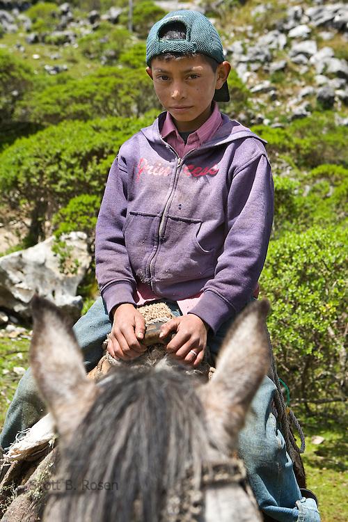 Guatemalan boy on horse, near San Nicolas, Western Highlands, Guatemala