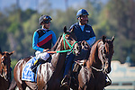 """September 26, 2015: Vieja Luna in the post parade for the Breeders' Cup """"Win and You're In"""" Chandelier Stakes at Santa Anita Park in Arcadia, California. Zoe Metz/ESW/CSM"""