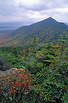 View of West Peak, Bigelow Mountain Preserve, Somerset County, Maine, USA