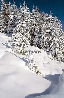 Oesterreich, Salzburger Land, Winterlandschaft | Austria, Salzburger Land, Winter Scenery