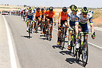 The peloton led by Intermarché-Wanty-Gobert Matériaux during Stage 5 of La Vuelta d'Espana 2021, running 184.4km from Tarancón to Albacete, Spain. 18th August 2021.    <br /> Picture: Luis Angel Gomez/Photogomezsport   Cyclefile<br /> <br /> All photos usage must carry mandatory copyright credit (© Cyclefile   Luis Angel Gomez/Photogomezsport)