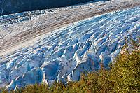 Exit glacier, Kenai Fjords National Park, Kenai mountains, Kenai Peninsula, southcentral, Alaska.