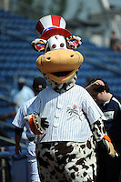 Staten Island Yankees mascot Scooter the Holy Cow during game against the Auburn Doubledays at Richmond County Bank Ballpark at St.George on August 2, 2012 in Staten Island, NY.  Auburn defeated Staten Island 11-3.  Tomasso DeRosa/Four Seam Images