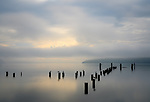 Vashon Island, Washington:<br /> Dawn, fog on Tramp Harbor and the East Passage. Salish Sea