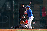 Illinois College Blueboys second baseman Drew Law (2) at bat in front of catcher Garrett Bogucki during a game against the Edgewood Eagles on March 14, 2017 at Terry Park in Fort Myers, Florida.  Edgewood defeated Illinois College 11-2.  (Mike Janes/Four Seam Images)
