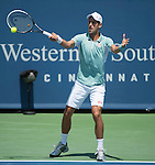 Novak Djokovic (SRB) loses to John Isner (USA), 7-6, 3-6, 7-5, at the Western & Southern Open in Mason, OH on August 16, 2013.