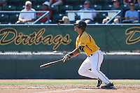 Zack Rivera #8 of the Long Beach State Dirtbags bats against the Indiana Hoosiers at Blair Field on March 15, 2014 in Long Beach, California. Indiana defeated Long Beach State 2-1. (Larry Goren/Four Seam Images)