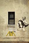Street Art in Enmore in Sydney, Australia