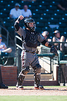 Salt River Rafters catcher Daulton Varsho (8), of the Arizona Diamondbacks organization, during an Arizona Fall League game against the Surprise Saguaros on October 9, 2018 at Surprise Stadium in Surprise, Arizona. The Rafters defeated the Saguaros 10-8. (Zachary Lucy/Four Seam Images)