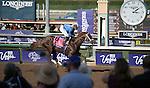 ARCADIA, CA - NOV 04: Tamarkuz #8, ridden by Mike Smith, wins the Breeders' Cup Las Vegas Dirt Mile at Santa Anita Park on November 4, 2016 in Arcadia, California. (Photo by Douglas DeFelice/Eclipse Sportswire/Breeders Cup)