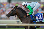 AUG 15 ,2015: Lucky Speed,ridden by Andreasch Staeke,wins the American St.Leger at Arlington International Race Track in Arlington Heights,IL. Kazushi Ishida/ESW/CSM