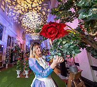 BNPS.co.uk (01202 558833)<br /> Pic: PhilYeomans/BNPS<br />  <br /> Mad hatters tea party fills the great Library...<br /> <br /> An Alice in Wonderland spectacular takes over historic Blenheim Palace in Oxfordshire this Christmas ...<br /> <br /> Britains only non-royal Palace has been transformed into a sound and light fantasy vision of the famous Lewis Carol Victorian novel, complete with a real life Alice to show the visitors around.<br /> <br /> Sir Winston Churchill's birthplace has been decked out with its own rabbit-hole corridor, hall of mirrors and pool of tears.<br /> <br /> Its famous long library is the scene of the Mad Hatter's Tea Party, while White Rabbit can be found in the sitting room.