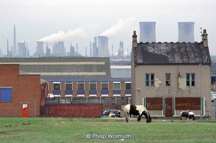 A horse grazes on waste ground in the St.Hilda's district of Middlesborough.  Employment in the town's ship-building, chemical and steel industries has declined markedly in recent years.