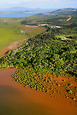 Mangrove de Poum, Nord de la Nouvelle-Calédonie