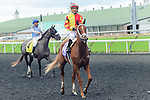 Isabella Sings(10) with Jockey Corey S. Nakatani aboard after the Natalma Stakes at Woodbine Race Course in Toronto, Canada on September 13, 2014 with Jockey Patrick Husbands aboard.