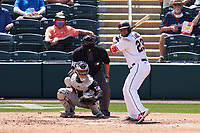 Minnesota Twins Nelson Cruz (23) bats during a Major League Spring Training game against the Pittsburgh Pirates on March 16, 2021 at Hammond Stadium in Fort Myers, Florida.  Also shown is umpire Fieldin Culbreth and catcher Michael Perez.  (Mike Janes/Four Seam Images)