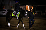 LOUISVILLE, KY - MAY 02: Always Dreaming heads to the track to complete preparation for the Kentucky Derby at Churchill Downs on May 02, 2017 in Louisville, Kentucky. (Photo by Alex Evers/Eclipse Sportswire/Getty Images)