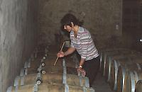A winery worker stirring the lees (batonnage) of white wine fermenting in oak barrels, Domaine Saint Martin de la Garrigue, Montagnac, Coteaux du Languedoc, Languedoc-Roussillon, France