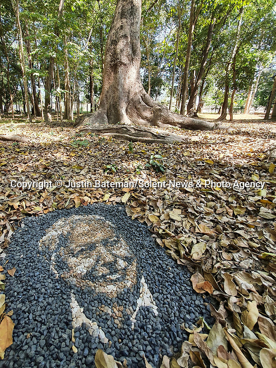 Pictured: Justin Bateman's portrait of David Attenborough made from pebbles.<br /> <br /> A British artist stuck in Thailand has spent his time constructing masterpieces from pebbles for locals to enjoy.  Justin Bateman had only planned on staying in Chiang Mai for a week - but has remained there now for nearly ten months after the pandemic struck. <br /> <br /> His pebble portraits include The Queen, Spanish painter Pablo Picasso, Michelangelo's David and a local farmer - who was bemused by his portrait.   Mr Bateman, from Portsmouth, Hants, was staying in Bali when he travelled to Chiang Mai, in Thailand, to visit some friends.   SEE OUR COPY FOR DETAILS.<br /> <br /> Please byline: Justin Bateman/Solent News<br /> <br /> © Justin Bateman/Solent News & Photo Agency<br /> UK +44 (0) 2380 458800