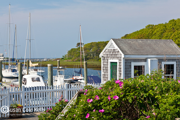 Saquatucket Harbor in Harwich, Cape Cod, MA, USA