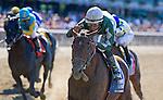 July 5, 2014: Zivo, ridden by Jose Lezcano, wins the Suburban Stakes on Belmont Derby Day at Belmont Park in Elmont, New York. Scott Serio/ESW/CSM