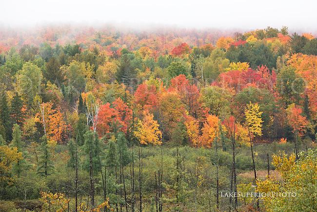 Goose Lake ,Autumn