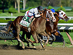 Will Take Charge (5), ridden by Luis Saez, grinds out a victory against Moreno (6), ridden by Junior Ortiz, to win the Travers Stakes on Travers Stakes Day on Saratoga Race Course in Saratoga Springs, New York on August 24, 2013.