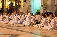 Myanmar, Burma.  Shwedagon Pagoda, Yangon, Rangoon.  Thai Pilgrims Praying in front of the Stupa.