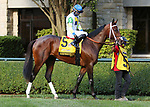 """Octover 03, 2020 : #5 Keepmeinmind and jockey David Cohen finished 2nd in the 107th running of The Breeders' Futurity (Grade 1) """"Win and You're In Breeders' Cup Juvenile Division"""" for trainer Robertino Diodoro at Keeneland Racecourse in Lexington, KY on October 03, 2020.  Candice Chavez/ESW/CSM"""