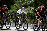 Geraint Thomas (WAL) and White Jersey Egan Bernal (COL) Team Ineos during Stage 16 of the 2019 Tour de France running 177km from Nimes to Nimes, France. 23rd July 2019.<br /> Picture: ASO/Pauline Ballet   Cyclefile<br /> All photos usage must carry mandatory copyright credit (© Cyclefile   ASO/Pauline Ballet)