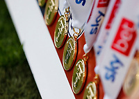 29th May 2021; Wembley Stadium, London, England; English Football League Championship Football, Playoff Final, Brentford FC versus Swansea City; Winners medals on display