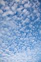 Altocumulus clouds, UK.
