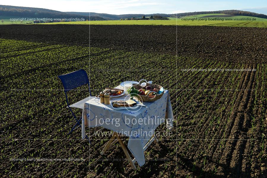 Germany, table with plate with german food on field / DEUTSCHLAND Tisch mit Teller mit deutschem Essen auf dem Feld