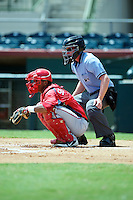 GCL Nationals Pedro Severino #2 and umpire Chase Eade during a Gulf Coast League game against the GCL Astros at Osceola County Stadium on July 20, 2012 in Kissimmee, Florida.  GCL Nationals defeated the GCL Astros 8-7.  (Mike Janes/Four Seam Images)