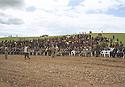 Iraq 1998.Celebration of Nowruz near Salaheddin with the personalities of KDP.Irak 1998.Fete de Nowruz pres de Salaheddin avec des personnalites du PDK