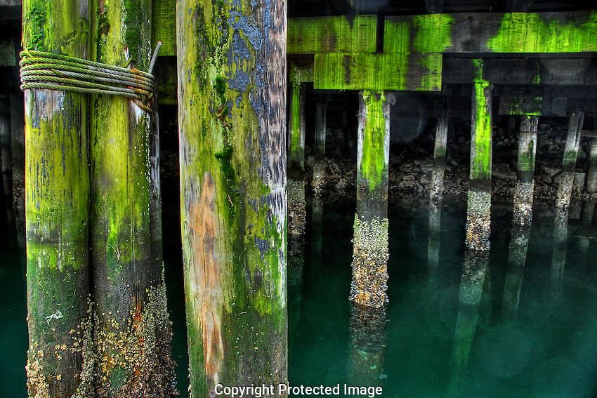 Under the docks on Granville Island