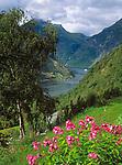 Norwegen, More og Romsdal, Geiranger am Geirangerfjord mit einem Postschiff der Hurtigruten | Norway, More og Romsdal, Geiranger at Geirangerfjord with mail-ship of Hurtigruten