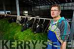 Maurice O'Driscoll on his farm in Ardfert on Tuesday.