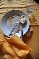 Avanzi di un pranzo nel piatto.Leftovers from a meal in the dish...