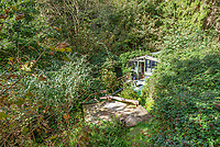 BNPS.co.uk (01202 558833)<br /> Pic: Symonds&Sampson/BNPS<br /> <br /> £125,000 - For your own idyllic rustic hideaway...<br /> <br /> Fancy the unique chance to own a remote woodland shack in its own private valley near Lyme Regis in Dorset?<br /> <br /> The timber chalet, with a pond, decking and a log bridge across a stream, is buried in the middle of 10 acres of private woodland near the seaside resort.<br /> <br /> The primitive but eco-friendly chalet can be slept it overnight but can't be used as a permanent residence.