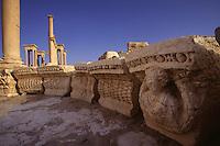 SIRIA - sito di Palmira(Tadmor) lungo il colonnato,tetrapilo sullo sfondo -