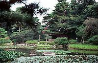 Kyoto: Heian Shrine--Pond and lilies. Serene setting. Photo '81.