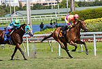 February 27, 2021: Phantom Currency #6, ridden by Paco Lopez, goes gate-to-wire win the Mac Diarmida Stakes (Grade 2) on the turf on Fountain of Youth Day at Gulfstream Park in Hallandale Beach, Florida. Liz Lamont/Eclipse Sportswire/CSM